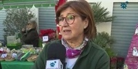 VIII-Feria-Solidaria-de-Navidad
