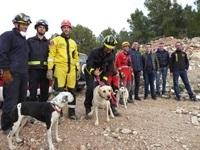 La Nucia Perros Rescate Bomb Ibiza 1 2019